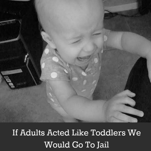 Here are some ways to avoid going to jail today, just in case you need it. Link to post in profile. #toddlers #humor #parenting #kids